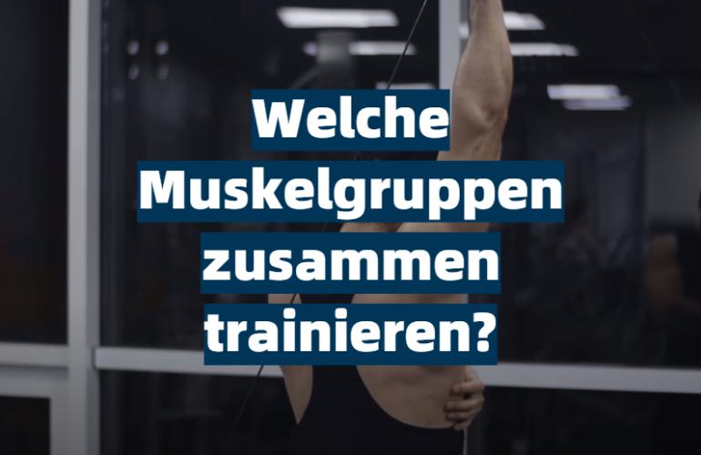 Welche Muskelgruppen zusammen trainieren?