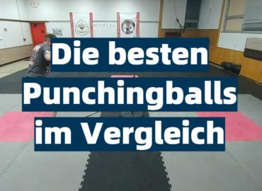 Die besten Punchingballs im Vergleich