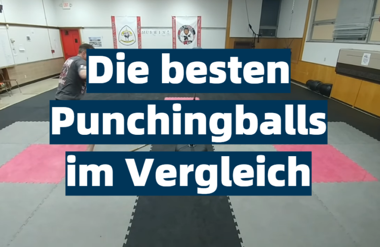 Punchingball Test 2021: Die besten 5 Punchingballs im Vergleich